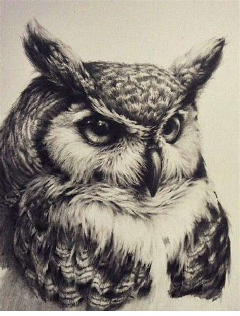 owl tattoo es collection of 25 owl tattoo designs