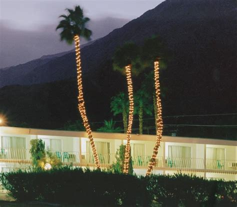 palm court inn palm springs robert polidori palm court inn highway 111 photograph