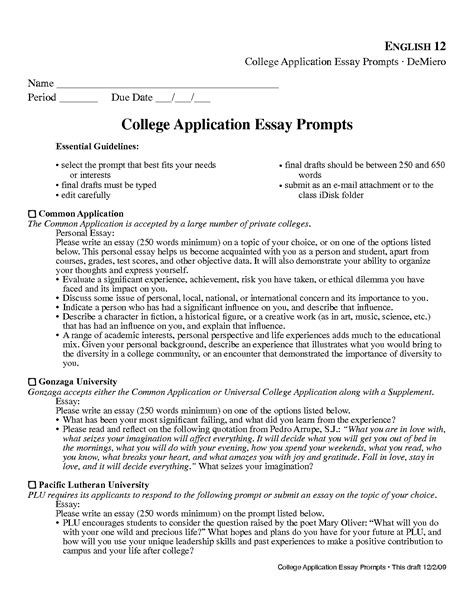 College Essay Format Exle by Writing A College Essay Format Nardellidesign