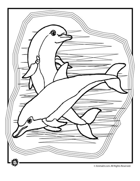 dolphins coloring page woo jr kids activities
