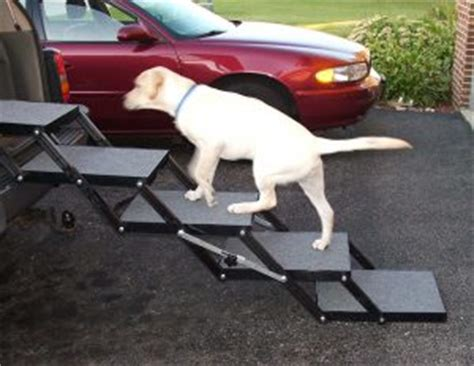 the best dog steps and ramps for the car 2018 | dogs recommend