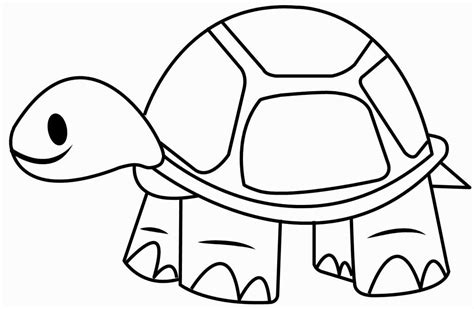 tortoise color tortoise coloring pages to print coloring home