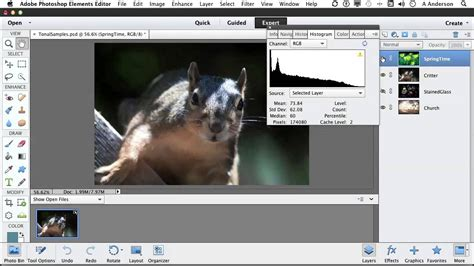 tutorial photoshop elements 11 photoshop elements 11 tutorial working with tonal and