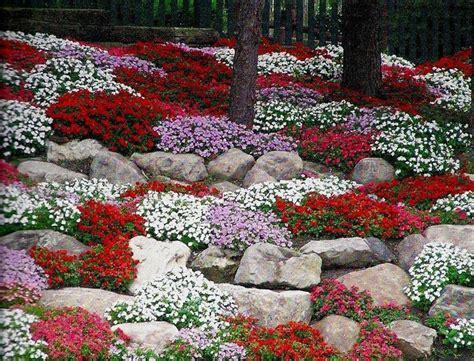 costruire giardino roccioso giardini rocciosi fai da te crea giardino
