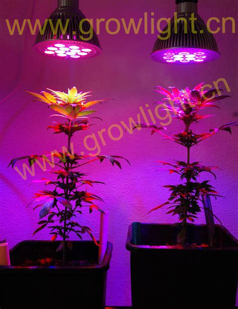 led grow light instructions curriwitqua garden led grow lights strips