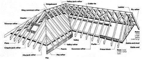 frame layout definition shanty boat roof rafters the cabin takes shape