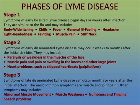 how can a live with lyme disease the health wellness show a look at lyme disease health wellness sott net