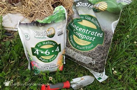 Natural Fertilizer For Garden Vegetables Vegetable Garden Fertilizer Recommendations