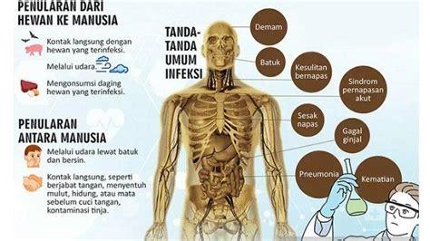 dilakukan pemelihara hewan  indonesia