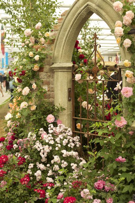 Garden Gate Flowers by Rhs Chelsea Flower Show Focus On The Flowers Flirty