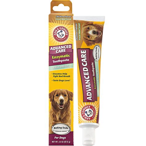 is chicken for dogs arm hammer enzymatic toothpaste for dogs chicken flavor 2 5 oz