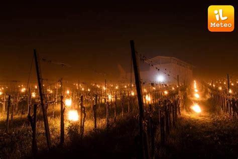 il meteo candela curiosita svizzera candele per scaldare l uva