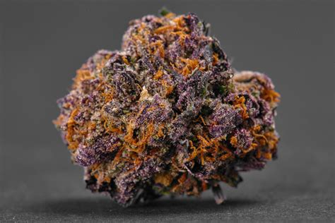 best new the best new marijuana strains for 2017