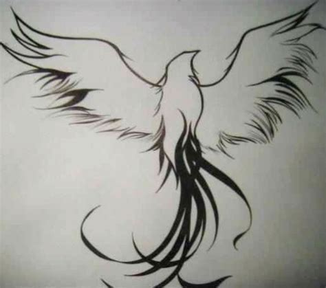 phoenix tattoo no outline top phoenix bird tattoo outlines images for pinterest tattoos