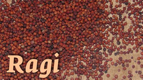 whole grains meaning in telugu 7 health benefits of ragi 6 easy ragi recipes the isha
