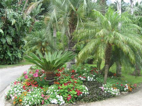 kork ease bette vacchetta piante ricanti fiorite 26 images fioriere per ricanti