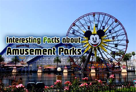 theme park facts interesting facts about amusement parks mental itch
