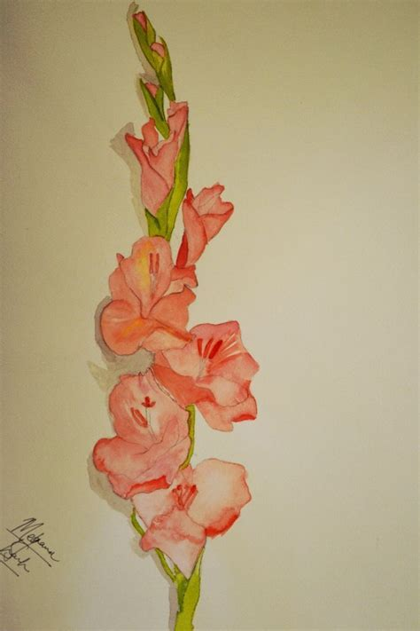 gladiolus flower tattoo 33 best gladiolus flower tattoos small images on