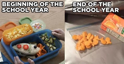 School Lunch Meme - 17 end of the school year moments that make parents go