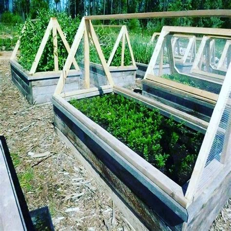 35 Fascinating Easy To Do And Unique Diy Raised Garden Vegetable Garden Covers