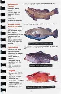 FLORIDA FISHING BOOK, FLORIDA SALT WATER FISH, FISHING REGS FLORIDA