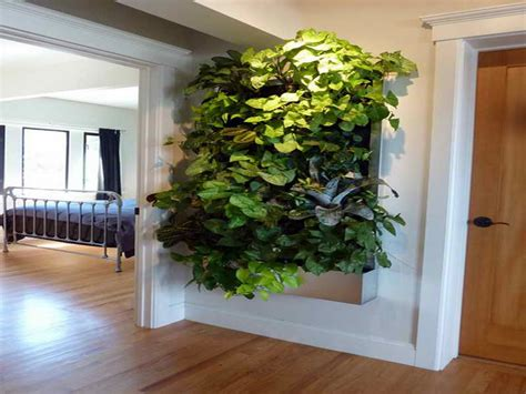 Indoor Living Wall Planters Ideas Http Lovelybuilding Wall Garden Indoor
