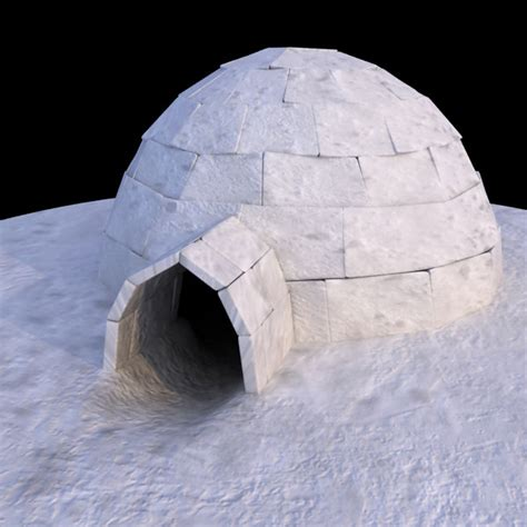 igloo house igloo house bing images