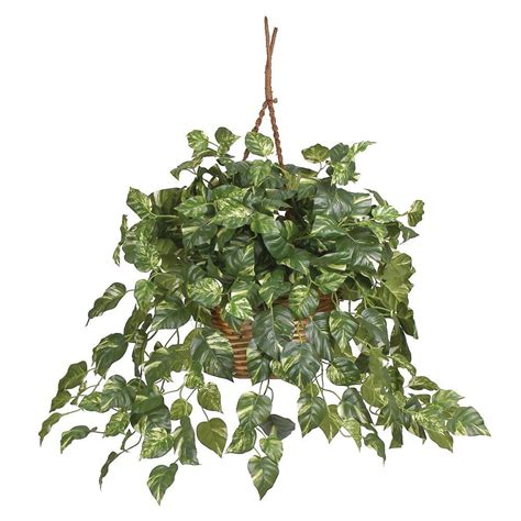 hanging planter basket nearly pothos hanging basket silk plant 6517 the