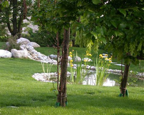 giardino di casa il giardino della casa di cagna il giardino di de pra snc