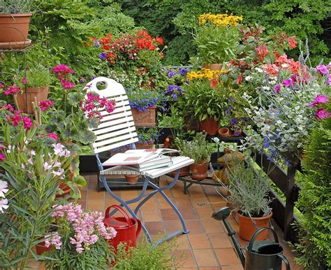 how to arrange a garden on the terrace