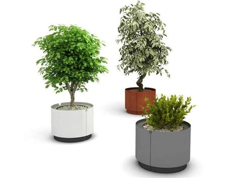 piante per esterno in vaso requisiti dei vasi da esterno scelta dei vasi