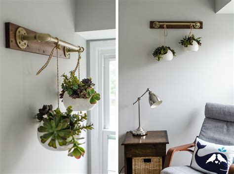 stylish ways   indoor plants   home decor