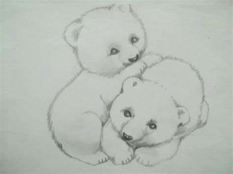 Imagenes A Lapiz De Osos   osos dibujo a l 225 piz carina malarchia arte pinterest