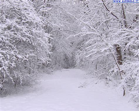 snow images news and entertainment sfondi neve jan 05 2013 20 44 12