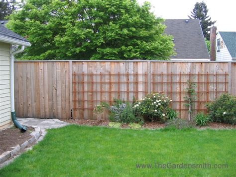 Simple Backyard Makeovers simple backyard makeover traditional landscape portland by the gardensmith