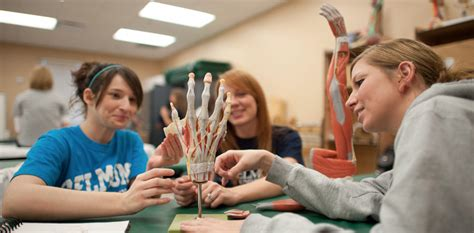 masters in occupational therapy weekend master s degree program school of occupational
