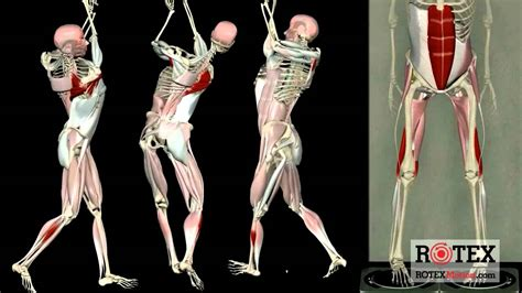 shoulder movement in golf swing dynamic golf swing prevent injury and increase power