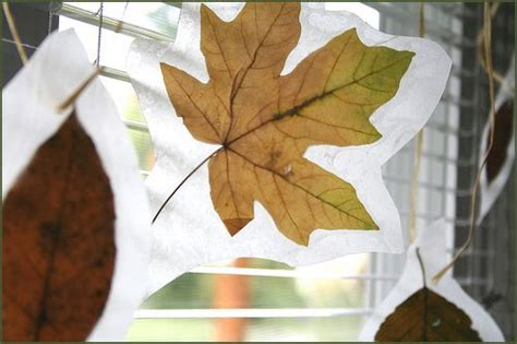 How To Make Wax Paper Leaves - wax paper leaves crafty awesomeness
