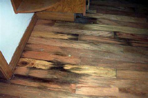 Rotting Basement Floors   Basement Flooring Damaged By Rot