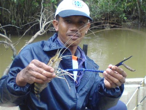 Pancing Flying Lure how to fish
