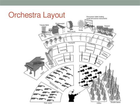 orchestra layout wikipedia pin orchestra layout for children on pinterest