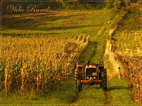imagenes de la vida rural camino de santiago turismo rural en mux 237 a