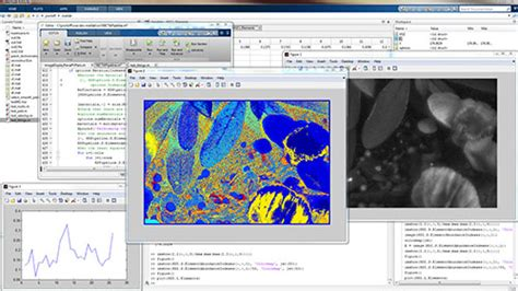 image processing in matlab perform image processing analysis and algorithm development books scyllarus matlab 174 toolbox scyllarus hyperspectral