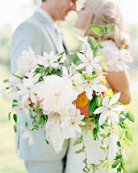 a bouquet of brides collection for seven bachelors this bouquet of brides means a happily after books 1522 best wedding bouquets images on martha