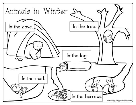 free coloring pages of animals that hibernate animals in winter freebie prekinder set