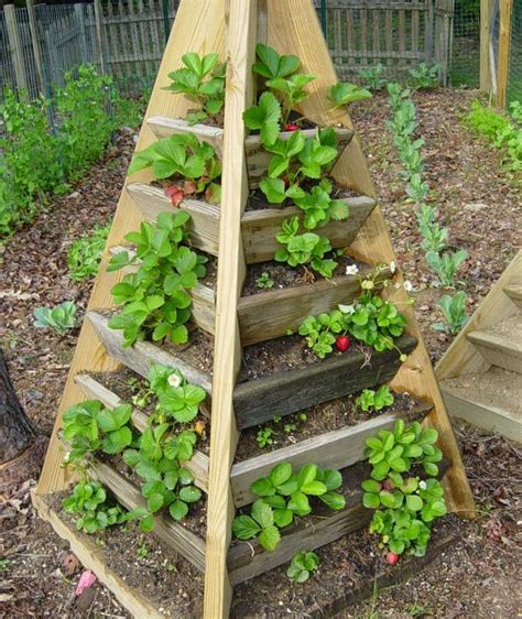Wooden Pyramid Planter by How To Build A Pyramid Strawberry Planter Diy Plans