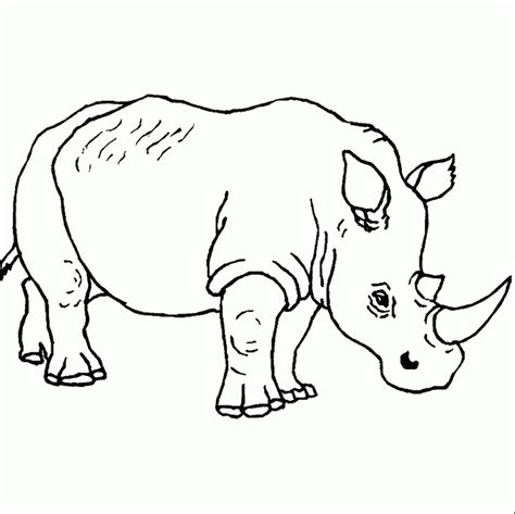 imagenes sud para pintar pintar dibujos de rinocerontes im 225 genes y fotos