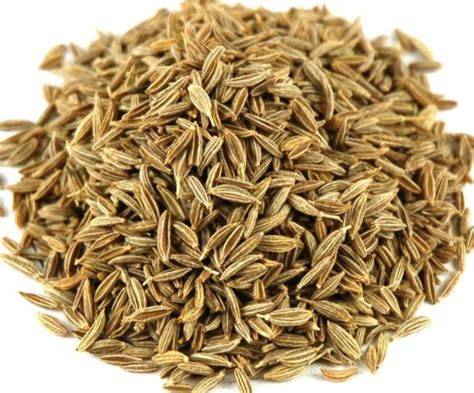 Definition Cumin by Cumin D 233 Finition What Is