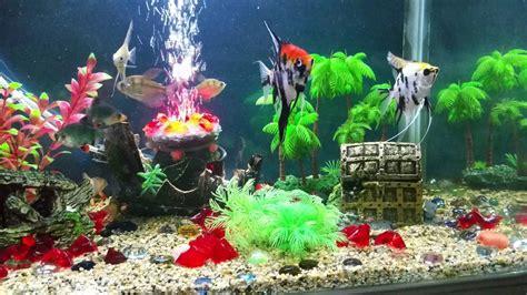 Decoration Of Aquarium by Fish Tank Decoration