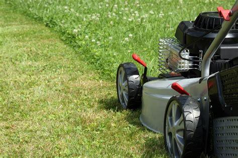 lawn care lawn care local edge lawn care